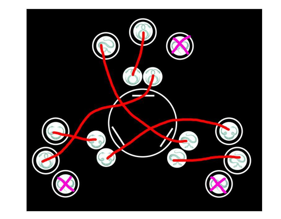 命运2最后遗愿详细打法攻略及地图装备分工解析