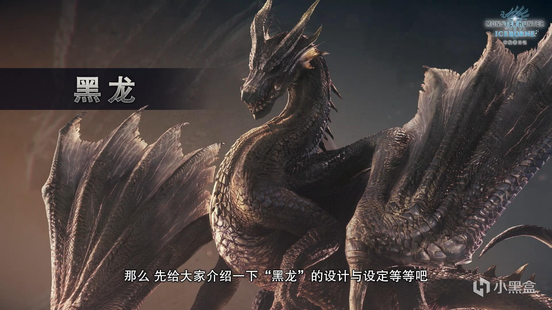 """最后的开发者日记公布!""""禁忌的古龙""""黑龙即将登场"""