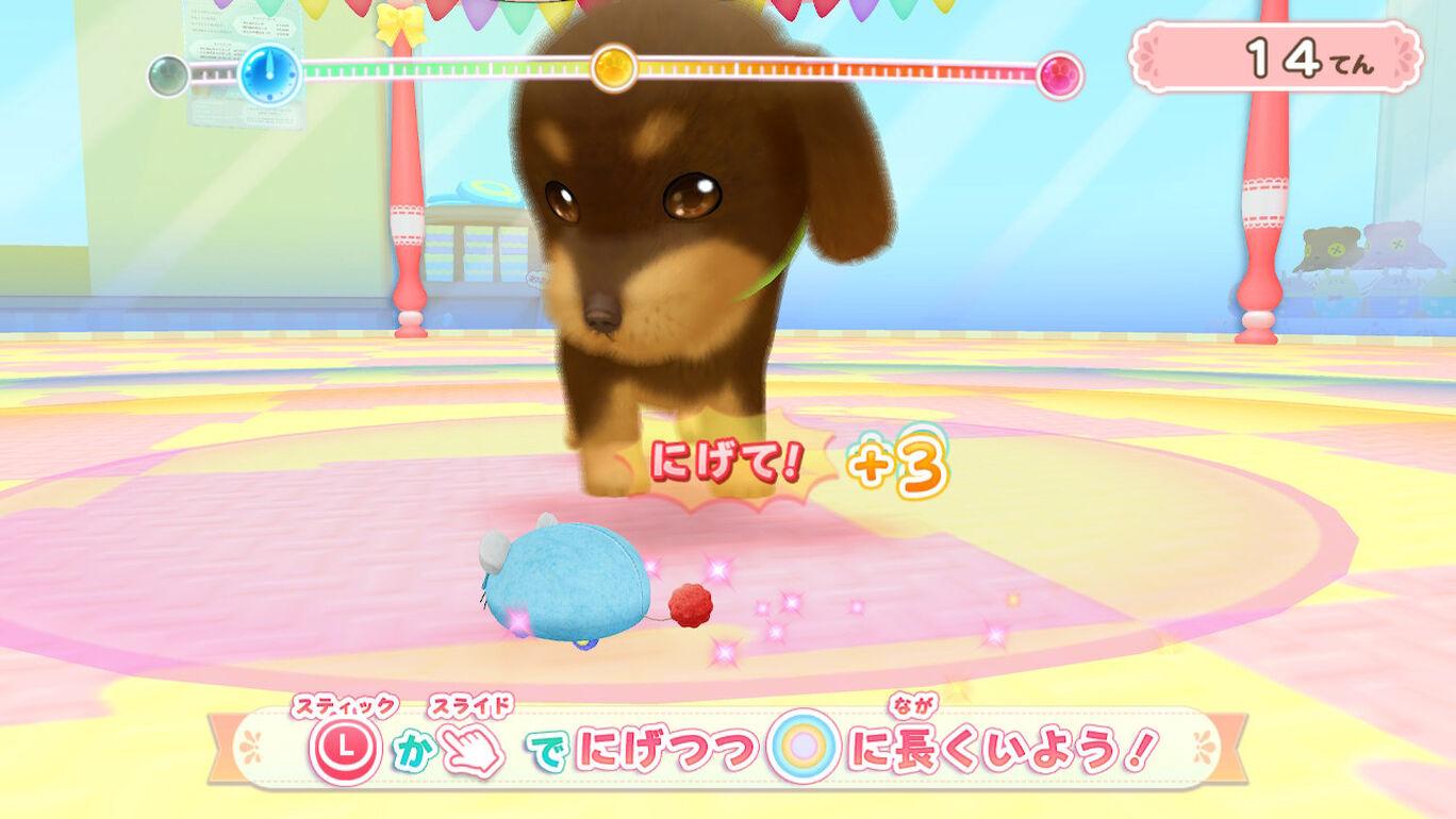 汪喵宠物店 与可爱宠物相伴的每一天(Wannyan Pet Shop Kawaii Pet to Fureau)插图3