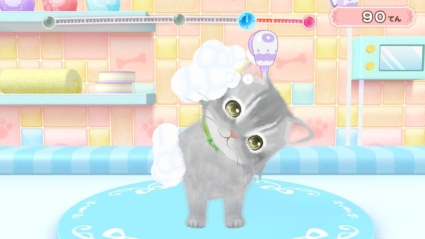 汪喵宠物店 与可爱宠物相伴的每一天(Wannyan Pet Shop Kawaii Pet to Fureau)插图2